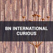 Обои BN International Curious фото