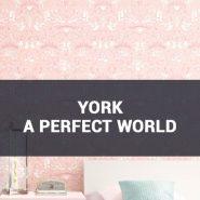 Обои York A Perfect World фото