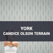 Обои York Candice Olson Terrain фото