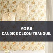 Обои York Candice Olson Tranquil фото