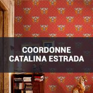 Обои Coordonne Catalina Estrada фото