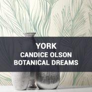Обои York Candice Olson Botanical Dreams фото