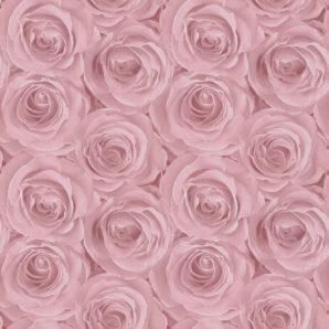 Обои AS Creation Roses 37644-1 фото