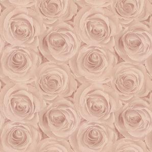 Обои AS Creation Roses 37644-2 фото