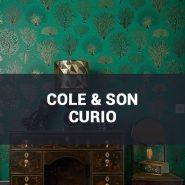 Обои Cole & Son Curio фото