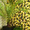 Обои Cole & Son Geometric II 105-2012 фото (1)