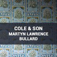 Обои Cole & Son Martyn Lawrence Bullard фото