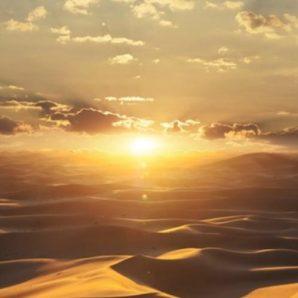 Панно Marburg Dune 32545 фото