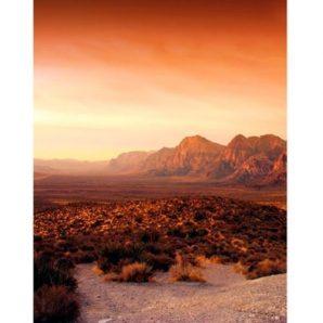 Панно Marburg Dune 32548 фото