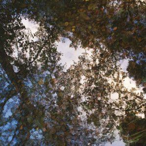 Панно Casadeco Riverside 3 RVSD85341547 фото