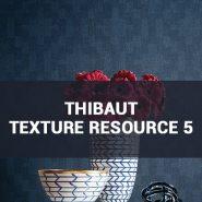 Обои Thibaut Texture Resource 5 фото